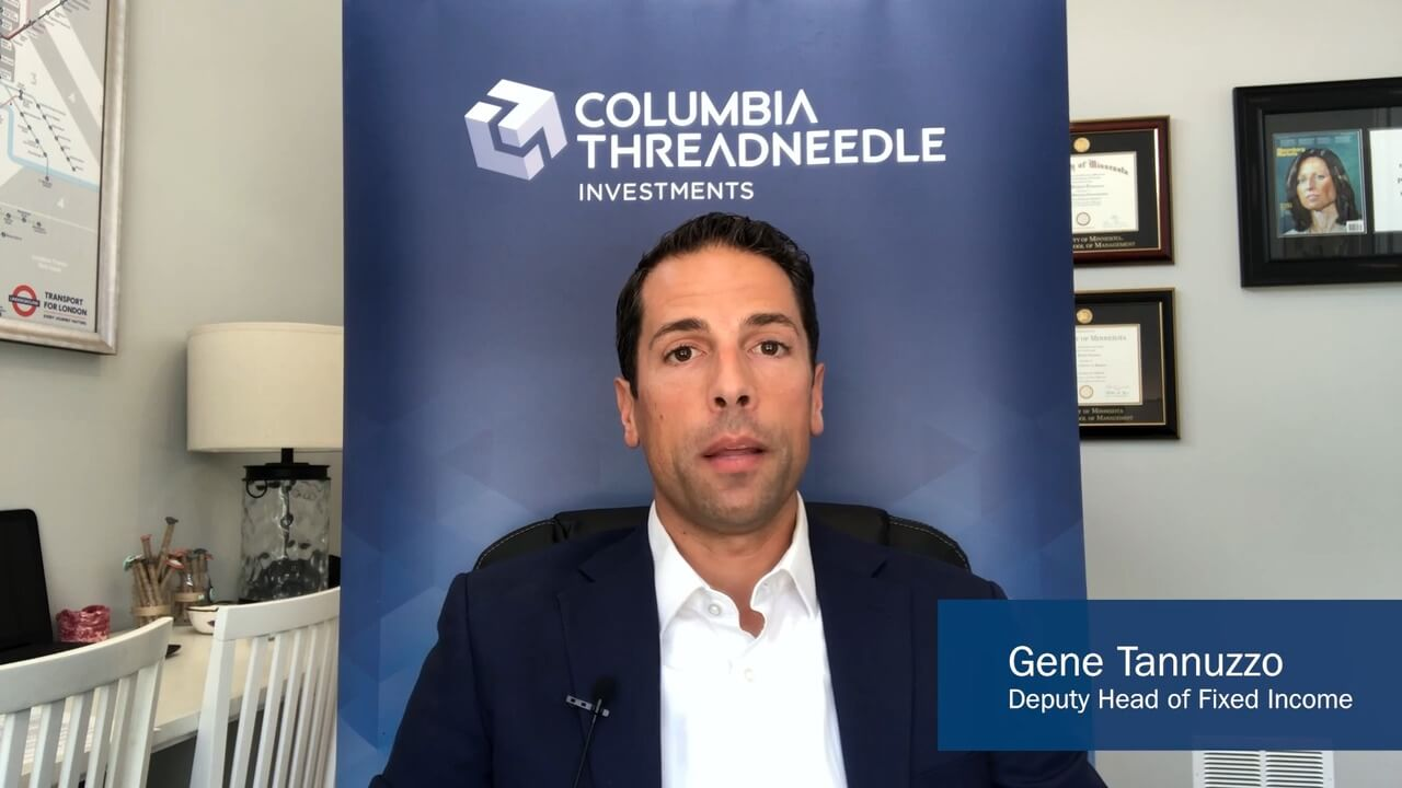 Image showing Gene Tannuzzo